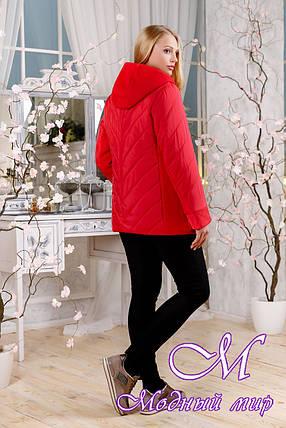 Молодежная весенняя куртка больших размеров (р. 48-60) арт. 1107 Тон 6, фото 2