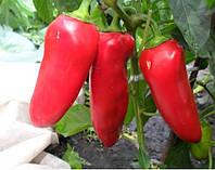Семена перца Купец 1 кг . Польша