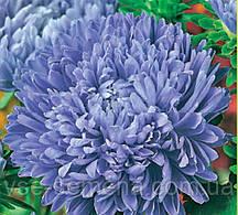 Астра Камелот синий 0,6 г (перефасовано Vse-semena)