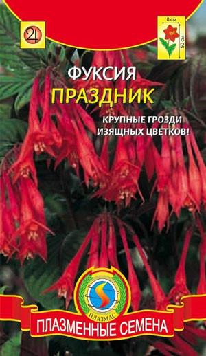 da4e738a30964 Фуксия Праздник, цена 14 грн., купить в Харькове — Prom.ua (ID#49722685)