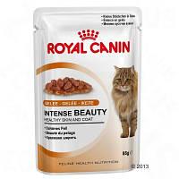 Royal Canin (Роял Канин) Intense Beauty in Jelly корм для кошек кусочки в желе (85 г)