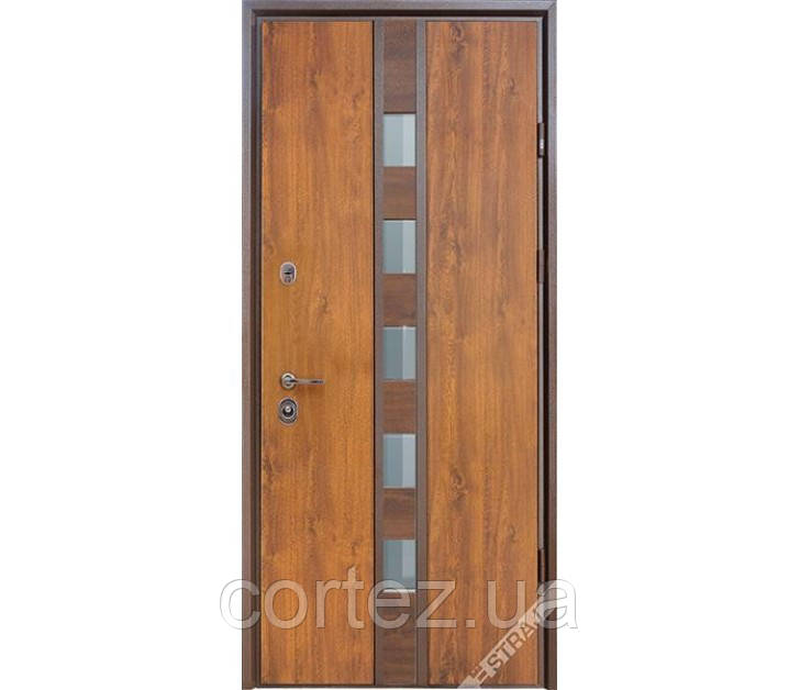 Входная дверь ТМ Страж Рива