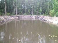 Очистка озер, прудов, водоемов от ила и сорняка