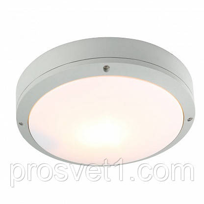 Вуличний світильник Arte Lamp City A8154PF-2GY