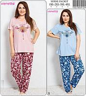 Комплект женский батал футболка и брюки VIENETTA