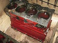 Блок цилиндров Д 240,243 (МТЗ 80,82) (пр-во ММЗ), фото 1