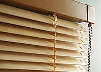 Жалюзи  VENUS 25mm c бамбуковыми перьями