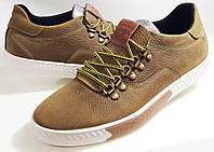 Мужские кожаные  кеды PHILIPP PLEIN, качество , оливковые, фото 1