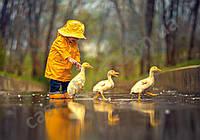 Пазлы Дождливый день, друзья, 500 элементов Castorland В-52264