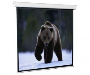 Экран для проектора настенный 240*240 SGM-1106 Redleaf, фото 2