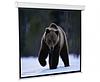 Экран для проектора настенный 171*128 SGM-4302 Redleaf