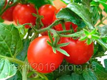 """Семена почтой.томат """" Безрассадный """" засухоустойчивый"""