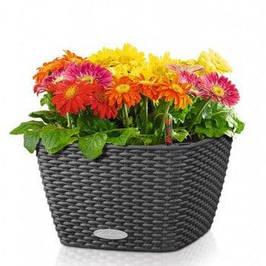 Декоративные вазоны для цветов