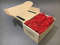 Стабилизированный мох в коробке (Red)