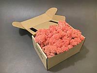 Стабилизированный мох в коробке (Pink)