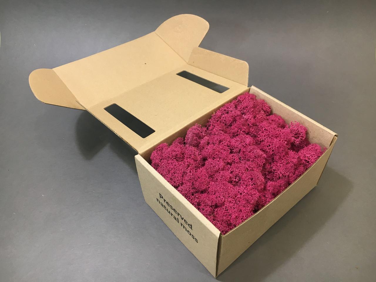 Стабилизированный мох в коробке (Cyclamen)