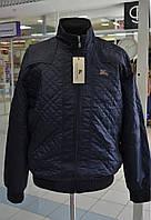 Мужская куртка Burberry синяя