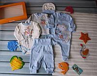 Подарочный нарядный комплект на мальчика 56 р., фото 1