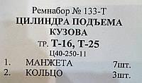 Ремкомплект цилиндра подьема кузова трактора Т-16,Т-25