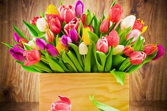 Как выбрать подарок на 8 марта. Пособие для мужчин