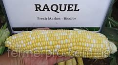 Семена сахарной кукурузы Ракель F1 \ Raquel F1 5000 семян Clause