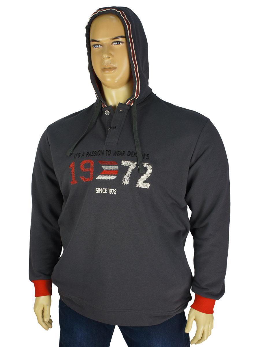 Чоловіча стильна толстовка Dekons 1248 в сірому кольорі у великому розмірі