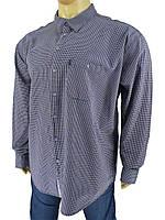 Чоловіча сорочка Tonelli 0660 B indigo великих розмірів