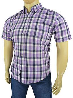 Чоловіча сорочка Love Man 0340 B клітинку великих розмірів