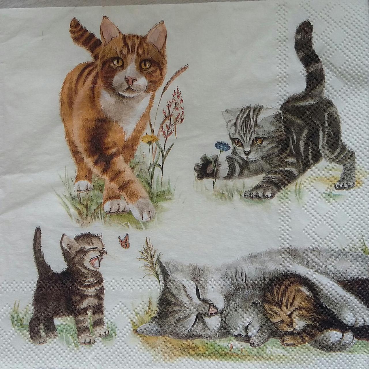 """Салфетка для декупажа """"Кошки"""" 25х25 см 10"""