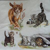 "Салфетка для декупажа ""Кошки"" 25х25 см 10 , фото 1"