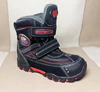 Зимние термо-ботинки от Super Gear мальчикам, р. 30,31,33
