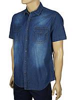 Джинсовая мужская рубашка Cordial C01848 син.
