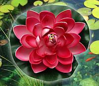 Декоративный наполнитель Лотос ( 9 цветов )