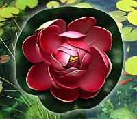 Декоративный наполнитель Лотос ( 8 цветов )