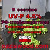 Агроволокно p-50g 3.2*100м черное UV-P 4.5% Premium-Agro Польша, фото 3