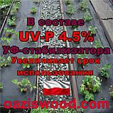 Агроволокно p-50g 1.6*100м черное UV-P 4.5% Premium-Agro Польша, фото 5