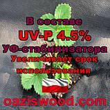 Агроволокно p-50g 3.2*100м черное UV-P 4.5% Premium-Agro Польша, фото 7