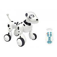 Робот-собака 619