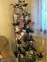 Напольные подставки для цветов