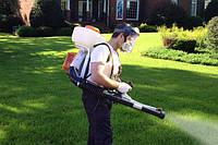 Обработка газона гербицидом