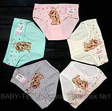 Трусики для девочек Biyo  2 (2-3 года)