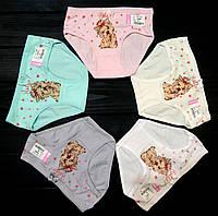 Трусики для девочек Biyo  4 (4-5 лет)