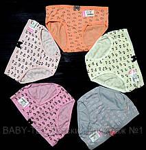 Трусики для девочек Biyo  6 (6-7 лет)