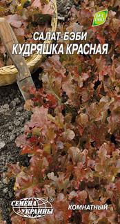 Семена Салат-бэби Кудряшка Красная 1г Семена Украины