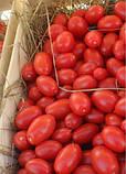 Семена томата Санмино F1, 1000 семян, фото 6