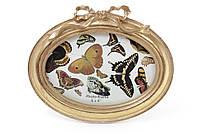 Рамка для фото овальная 19*16см Бант, цвет - состаренное золото BonaDi 450-113