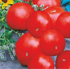 Семена томатов Иришка