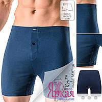 Трусы-шорты мужские больших размеров. Боксеры хлопок. Польское нижнее белье для мужчин Key™.
