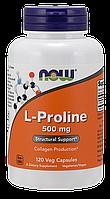 Синтез коллагена для укрепления связок - Пролин / NOW - L-Proline 500mg (120 caps), фото 1