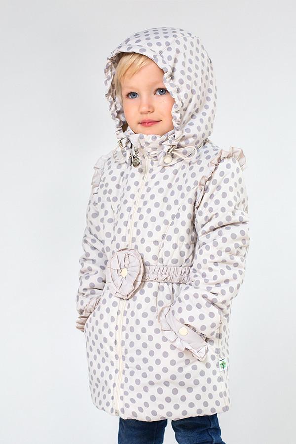 Куртка Демисезонная для Девочки в Горошек. 110 См — в Категории ... a757fd8bf9368